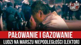 Pałowanie i gazowanie ludzi na Marszu Niepodległości [LEKTOR] (11.11.2020 r.)