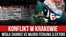 Konflikt w Krakowie – Wisła Sharks vs Młoda Ferajna [LEKTOR] (01.12.2020 r.)